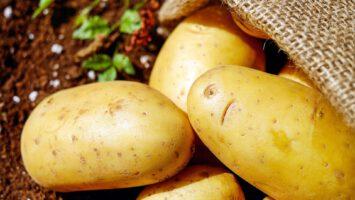 vlastní brambory