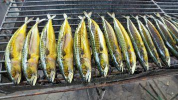 Šťavnaté makrely