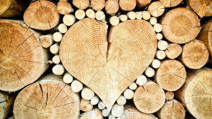 skladovat dřevo